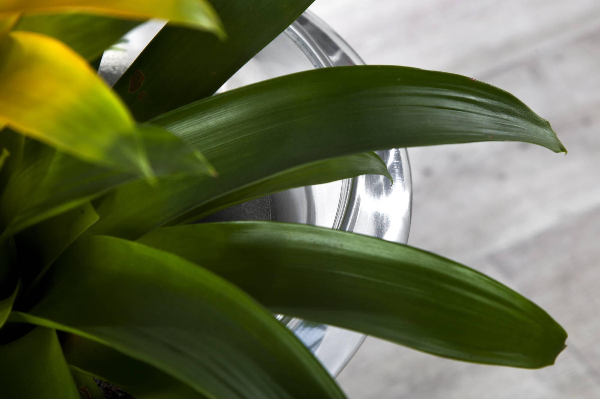 Váza Gracie 65cm