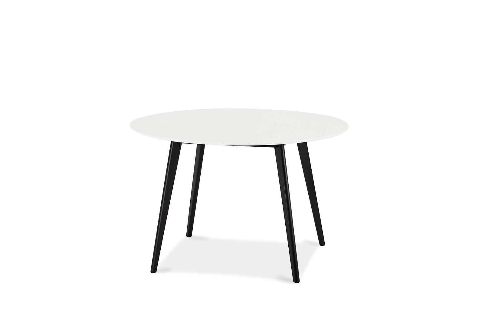 Jídelní stůl Aaden, bílá / černá